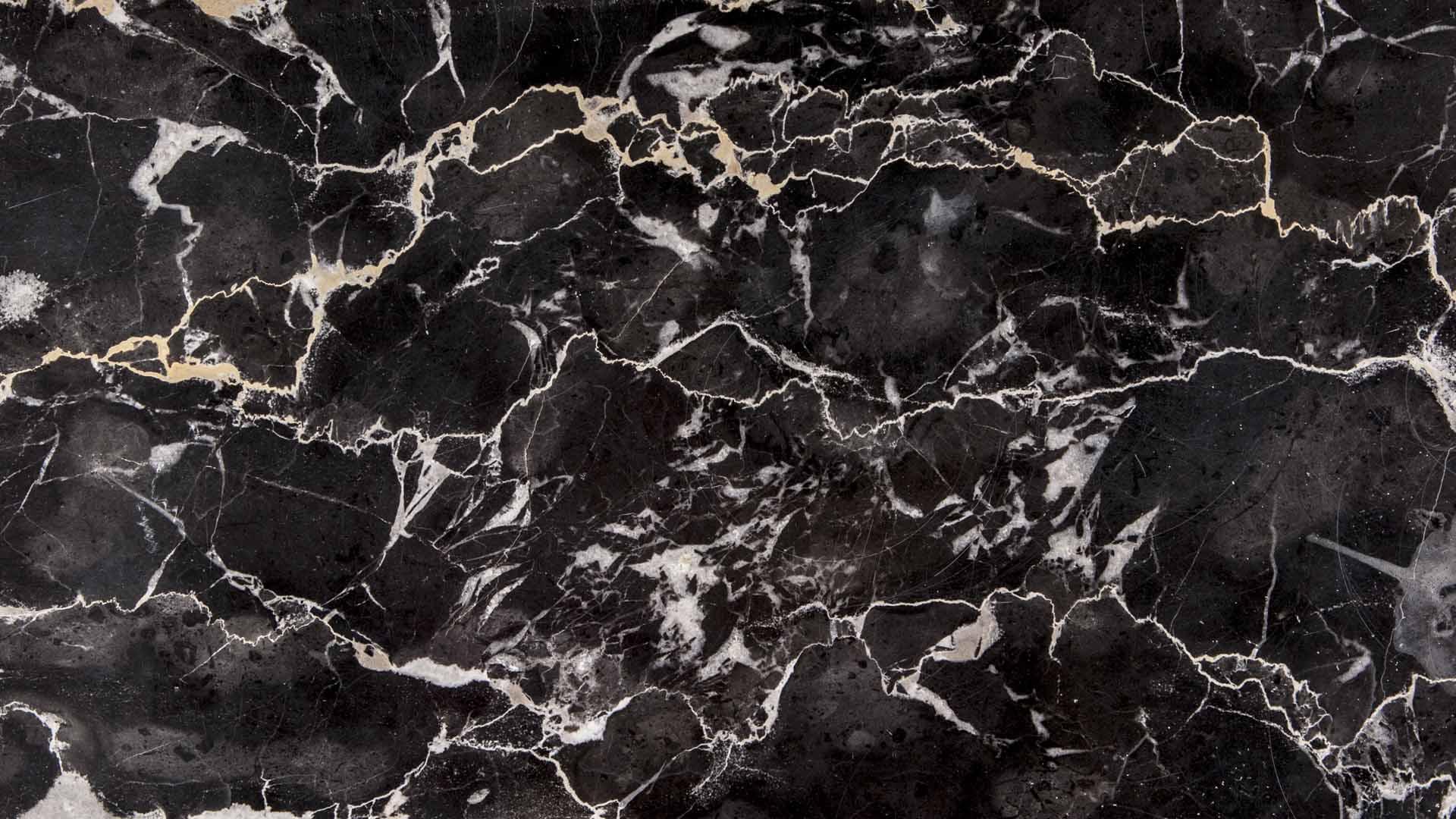 Black Marble Tile  Polished Black Marble Tile  Cosmo -7160
